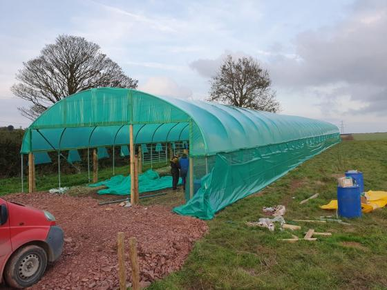 Polytunnel Animal Shelters