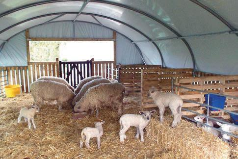 QUALITY SHEEP HOUSING, BUILT TO LAST