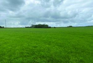 25 acres of Agricultural Grassland