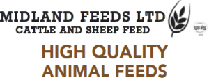 MIDLAND FEEDS LTD CATTLE AND SHEEP FEED HIGH QUALITY ANIMAL FEEDS
