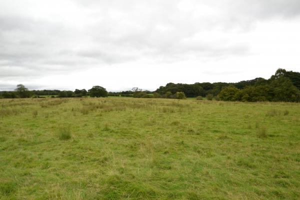 53.49 Acres Land | Stockport