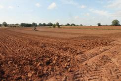 96 Acres of Grade I Land (in 4 convenient Lots)