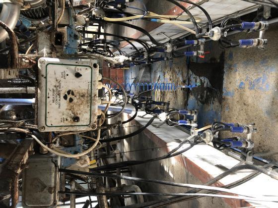 Alfalfa milking parlour and vacuum pump, milk tank and cooling compressor