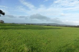 LAND AT STANWORTH FARM, WITHNELL, CHORLEY  FOR SALE BY PRIVATE TREATY