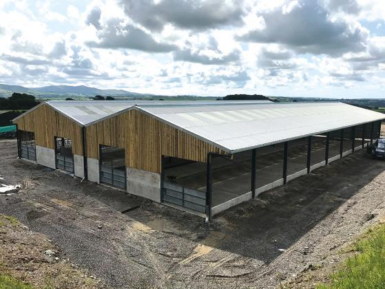 Suppliers of Agricultural, Equestrian & Industrial Steel Framed Buildings.