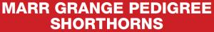 MARR GRANGE PEDIGREE SHORTHORNS