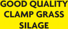 GOOD QUALITY CLAMP GRASS SILAGE