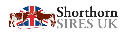 SHORTHORN SIRES UK ANNOUNCEMENT