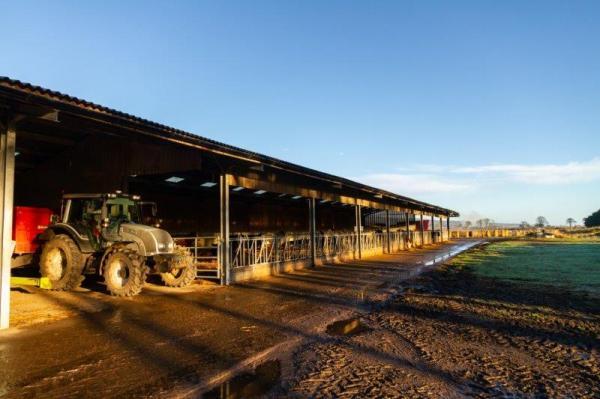 KIRKTON FARM, GOLSPIE, KW10 6TA