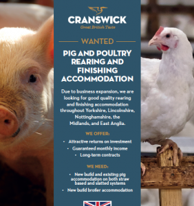 WANTED PIG AND POULTRY  REARING AND  FINISHING  ACCOMMODATION